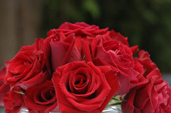 Rote Rosen an der Hochzeit Stockbilder