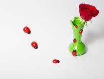 Rote Rosen in einem grünen Vase Lizenzfreie Stockfotos