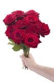 Rote Rosen für Sie Stockfotos