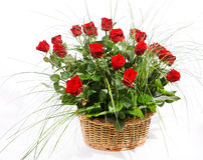 Rote Rosen im Korb