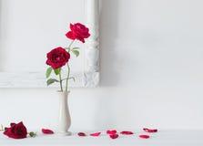 Rote Rosen im Vase auf Hintergrundweißwand Stockfotos