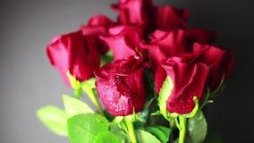 Rote Rosen mit Tautropfen auf einem schwarzen Hintergrund stock video