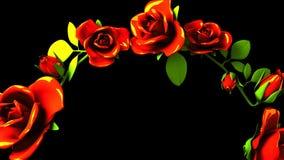 Rote Rosen-Rahmen auf schwarzem Text-Raum stock video