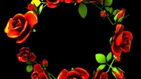 Rote Rosen-Rahmen auf schwarzem Text-Raum stock video footage