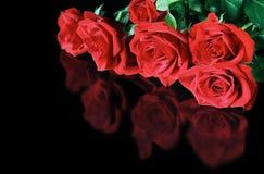 Rote Rosen reflektiert Stockbilder