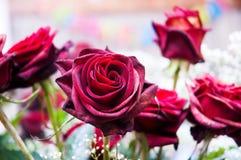 Rote Rosen und andere Blumen Lizenzfreie Stockbilder