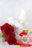 Rote Rosen und Eheringe Lizenzfreies Stockbild