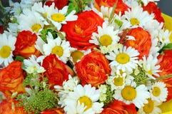 Rote Rosen und Gänseblümchen stockbilder