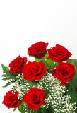 Rote Rosen und Gypsophila stockfotos