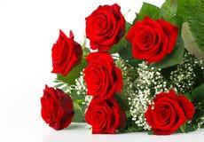 Rote Rosen und Gypsophila Stockbilder