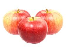 Rote süße Äpfel Stockfoto
