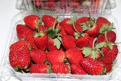 Rote süße Erdbeerverpackung Stockfotografie