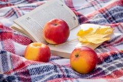 Rote saftige Äpfel und ein gelbes Ahornblatt nahe einem offenen Buch im woods_ lizenzfreies stockbild
