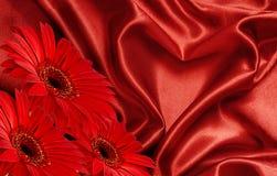 Rote Satin Herz- und Gerberablumen Stockbilder