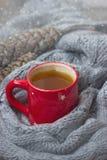 Rote Schale heißer Tee mit Kiefernkegeln und Schaldekoration Lizenzfreie Stockbilder