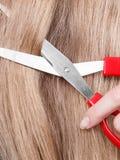 Rote Scheren auf blondem Haar Abschluss oben Lizenzfreie Stockfotos