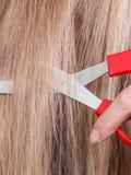 Rote Scheren auf blondem Haar Abschluss oben Lizenzfreies Stockbild