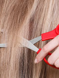 Rote Scheren auf blondem Haar Abschluss oben Stockfotografie