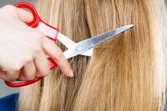 Rote Scheren auf blondem Haar Abschluss oben Lizenzfreies Stockfoto
