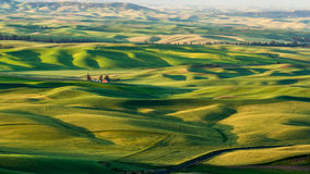 Rote Scheune auf den schönen Erntegebieten Lizenzfreie Stockfotos