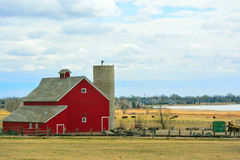 Rote Scheune mit Kühen und Eingreifen Vorstadthäusern und Condominiu lizenzfreies stockfoto