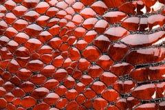 Rote Schlangehaut. Stockbild