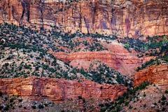Rote Schlucht-Bäume und Klippen Stockbild