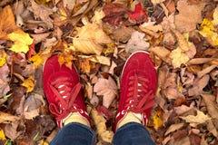 Rote Schuhe in den Blättern während des Falles stockfotos