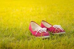 Rote Schuhe im Garten Lizenzfreie Stockfotografie