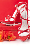 Rote Schuhe mit Kästen Stockfotografie