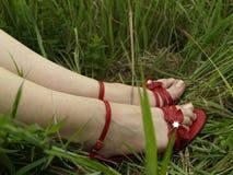 Rote Schuhe und Schönheitsfahrwerkbeine Stockfotografie