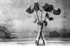 Rote Schwarzweiss-Rosen im Vase Stockbild