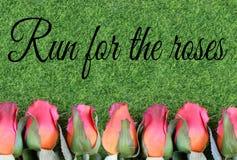 Rote Seidenrosen und künstliches grünes Gras für die Ausführung das vollblütige Rennen nannten das Kentucky Derby stockfoto