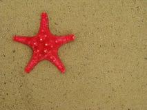 Rote Starfish auf Sand Lizenzfreie Stockfotografie