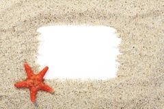 Rote Starfish auf Sand vom Meer mit weißem Platz für Text Stockfotografie