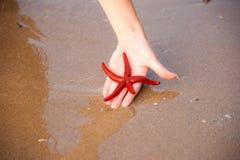 Rote Starfish in der Hand Lizenzfreie Stockfotos
