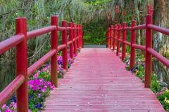 Rote Steg-Überfahrt-Frühlings-Blumen-Blüte lizenzfreie stockfotos
