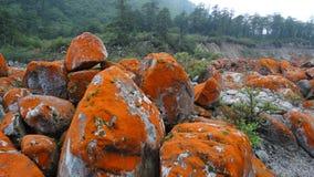 Rote Steine Strand, Berg Gongga Stockfotos