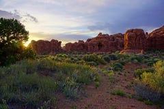Rote Steinwüstenszene mit Felsformationen und gelben Blumen Lizenzfreie Stockfotos