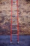 Rote Strichleiter Stockbilder