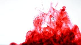 Rote Tinte im Wasser Auszug stock footage