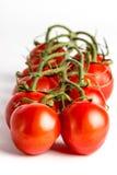 Rote Tomate Lizenzfreie Stockfotografie