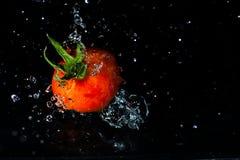 Rote Tomate, die in Wasser spritzt Lizenzfreie Stockfotos