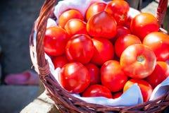 Rote Tomate in einem Weidenkorb Lizenzfreies Stockfoto