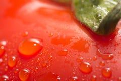 Rote Tomate mit Wassertropfen Makro stockfotos