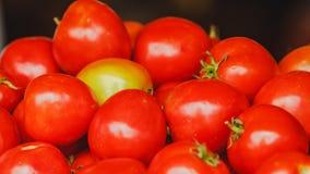 Rote Tomaten Stockfotos
