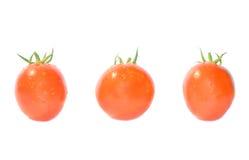 Rote Tomaten. Stockbilder