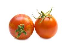 Rote Tomaten. Stockfotografie