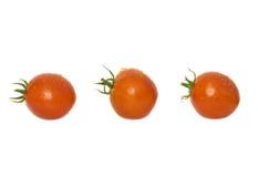 Rote Tomaten. Stockfotos