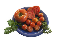 Rote Tomaten Stockfoto